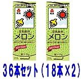 紀文 豆乳 メロン  200ml  36本セット 常温保存可能