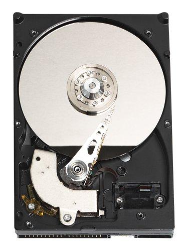 western-digital-wd3200jbrtl-caviar-320-gb-pata-35-inch-hard-drive
