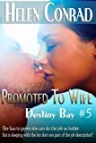 img - for Promoted to Wife (Destiny Bay) book / textbook / text book