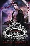 Das Schattenreich der Vampire 20: Der Held der Reiche (Volume 20) (German Edition)