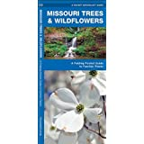 Missouri Trees & Wildflowers: A Folding Pocket Guide to Familiar Species (Pocket Naturalist Guide Series)