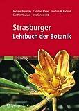 Image de Strasburger - Lehrbuch der Botanik