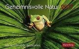 Kalender-2017-Tischkalender-Geheimnisvolle-Natur-365-faszinierende-Fotografien-Aufstellkalender-230-x-170-cm-Querformat-Naturkalender