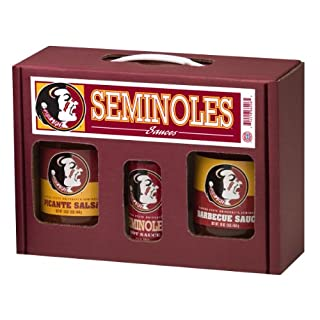 FLORIDA STATE Seminoles TailGate Hot Sauce BBQ Salsa