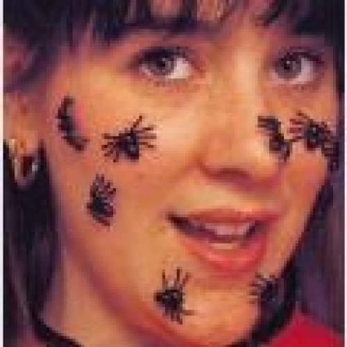 Rubie's Costume Co Creepy Spiders -40Pcs B/C Costume