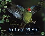 The Secrets of Animal Flight image