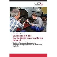 La dirección del aprendizaje en el contexto laboral: Bachiller Técnico en Explotación, Mantenimiento y Reparación...