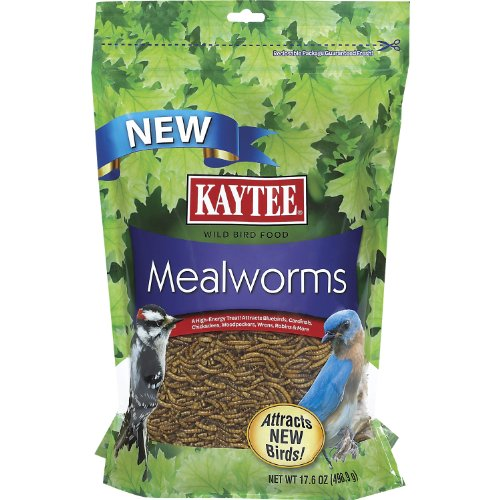 kaytee-mealworms-176-ounce-pouch