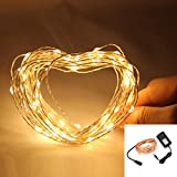 NexScene Starry Durable DC Copper Coating 10M 33FT Copper Wire Flexible Lights 100 LED For Wedding Christmas Party Holiday with 12V Power Adapter (Warm White)