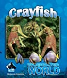 Crayfish (Underwater World Set 2)