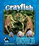 Crayfish (Underwater World Set 2)