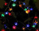 TLT 40 LED Battery Operated Double-deck Lotus Fairy String Lights (Mulit-color) - Great for Christmas Garden Rooms Party Decor LED021C