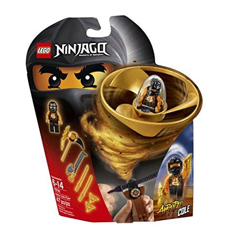 Ninjago Lego Flyers