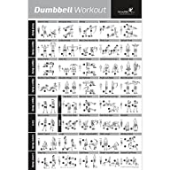 Dumbbell Exercise Poster – Strength T…