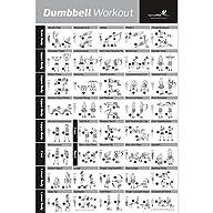 Dumbbell Exercise Poster – Strength T…