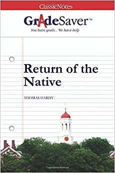 return of the native essay questions