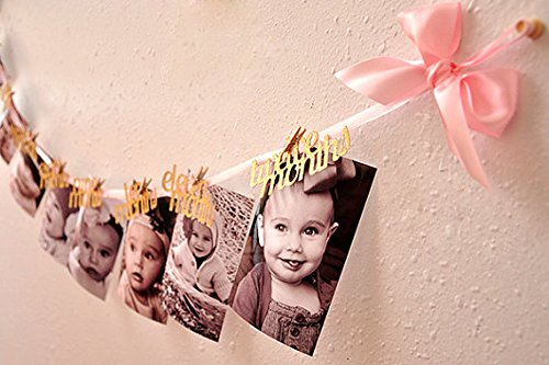 Find Discount 1st Birthday Girl Decorations - 12 Month Photo Banner - Monthly Photo Banner Birthday ...
