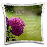 3dRose pc_110502_1 Pretty Pink Roses Love Is Patient Bible Verse – Inspirational – pillow Case, 16 by 16″