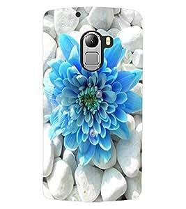 ColourCraft Beautiful Flower Design Back Case Cover for LENOVO VIBE X3 LITE