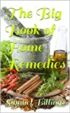 img - for The Big Book of Home Remedies book / textbook / text book