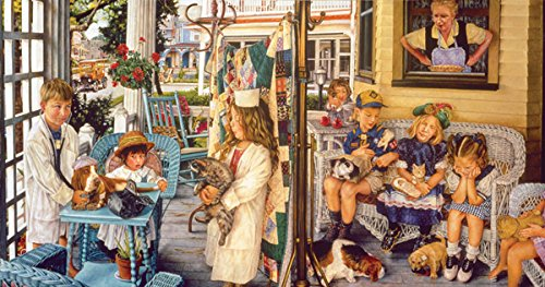 The Front Porch Vet a 300-Piece Jigsaw Puzzle by Sunsout Inc.