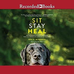 Sit Stay Heal Audiobook