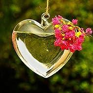 [Free Shipping] Heart Shape Hanging Glass Vase Garden Hydroponic Plants Container // Forma de corazón de cristal colgando florero jardín plantas hidropónicas contenedor