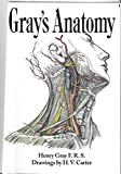 Gray's Anatomy (Barnes & Noble Leatherbound Classics) (0760722730) by Henry Gray