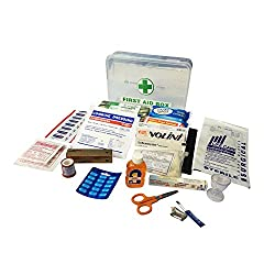 IndoSurgicals All Purpose First Aid Kit, Plastic Box with 21 Items