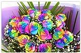 衝撃的なサプライズプレゼント!虹色のバラレインボーローズミラクル 20本の花束