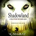 Shadowland: A Tale from the Dark Ages Audiobook by C.M. Gray Narrated by Ioan Hefin