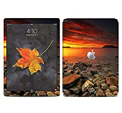 Theskinmantra Pebbles and water SKIN/STICKER/VINYL for Apple Ipad Pro Tablet 9 inch