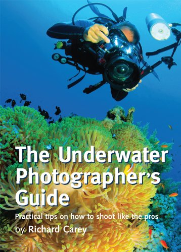the-underwater-photographers-guide-practical-tips-on-how-to-shoot-like-the-pros
