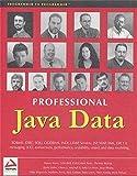 img - for Professional Java Data: RDBMS, JDBC, SQLJ, OODBMS, JNDI, LDAP, Servlets, JSP, WAP, XML, EJBs, CMP2.0, JDO, Transactions, Performance, Scalability, Object and Data Modeling book / textbook / text book