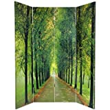 Oriental Furniture Bubbling Brook Picture, 6-Feet Path of Life Nature Photography Room Divider, 4 Panels