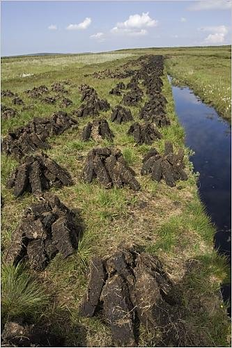 Photograph of recently dug peat blocks drying on the Isle of Islay, Scotland by Mark Boulton