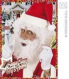 Santa Claus Curly Beard Eyebrows Wig for Hair Accessory Fancy Dress