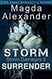 Storm Surrender (Storm Damages Book 5)