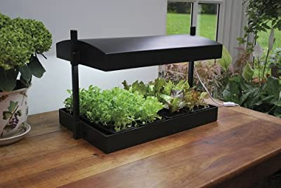 forestfox Indoor Grow Light Garden Plant Propagator Hydroponics Kit All Year Herb Growth