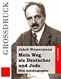 img - for Mein Weg als Deutscher und Jude: Eine Autobiographie (German Edition) book / textbook / text book