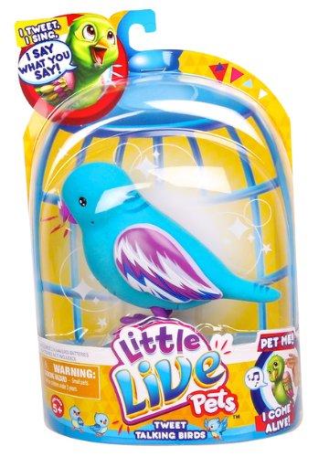 Little Live Pets Bird Cool Cookie