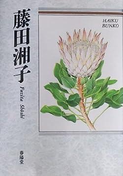 藤田湘子―自選三百句 (俳句文庫)