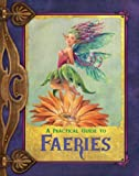 A Practical Guide to Faeries (Practical Guide To...)