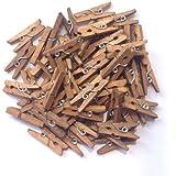 "LWR Crafts Wooden Mini Clothespins 200 Per Pack 1"" 2.5cm (Jacobean)"