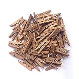 "LWR Crafts Wooden Mini Clothespins 100 Per Pack 1"" 2.5cm (Jacobean)"