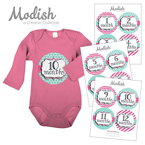 12 Monthly Baby Stickers, Pink & Teal, Girl, Baby Belly Stickers, Monthly Onesie Stickers, First Year Stickers Months 1-12, Pink & Teal, Baby Girl