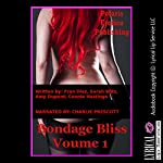 Bondage Bliss, Volume 1: Five Erotica Stories with Bondage | Fran Diaz,Sarah Blitz,Amy Dupont,Connie Hastings
