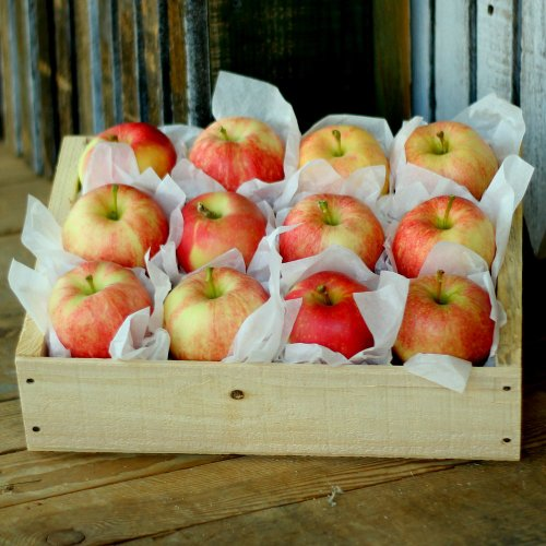 6lb Washington Gala Apple Crate