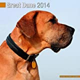 Avonside Publishing Great Dane 2014 (Calendar 2014)