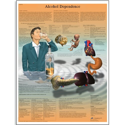 3B Scientific Glossy Paper Alcohol Dependence Anatomical Chart